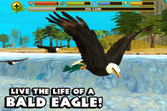 Eagle Simulator Скриншот