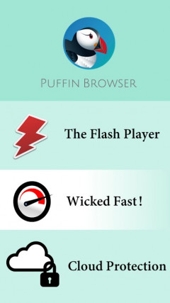 Puffin Web Browser 4.1.1.1119 Скриншот